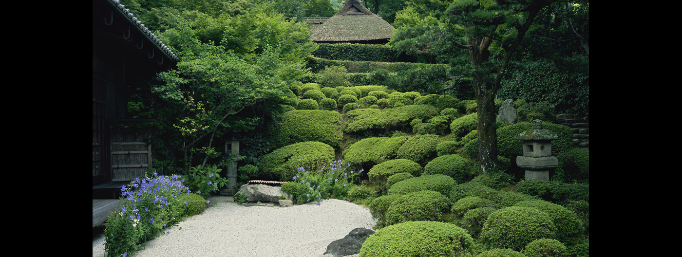 Kyoto, coexists with nature